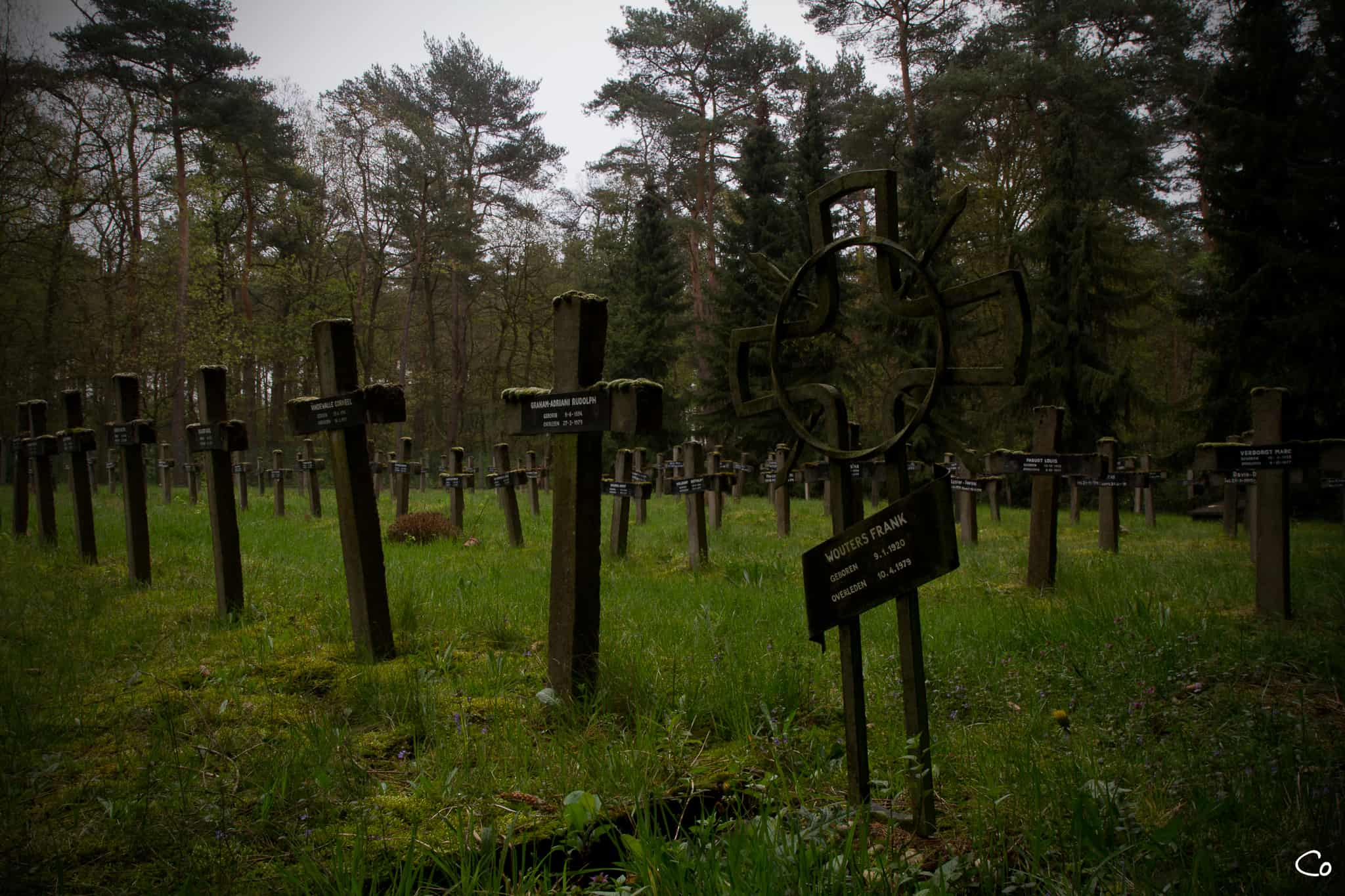 Cemetary of the insane-5